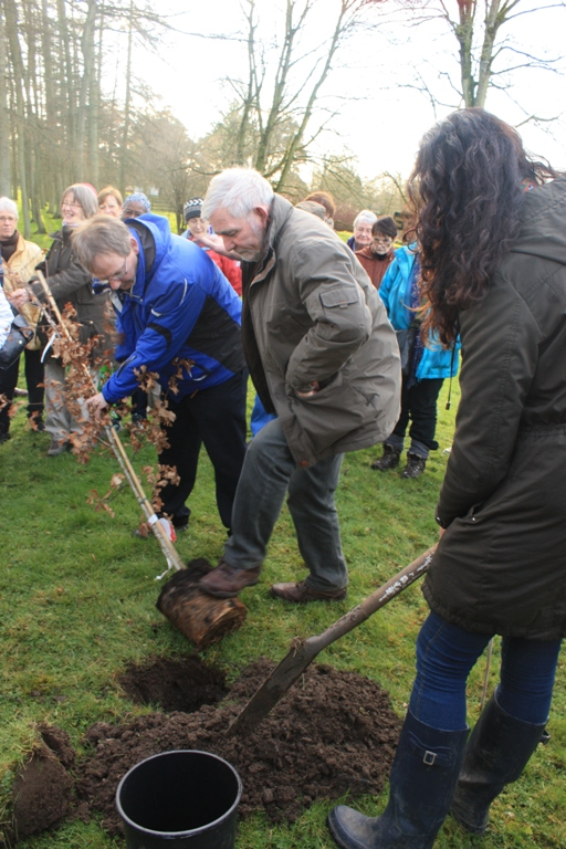 An oak tree was planted in memory of Niall Hartnett